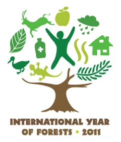 2011 - Año Internacional Bosques